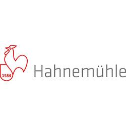 logo-Hahnemuehle