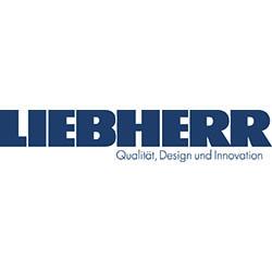 LH-Logo DE_QDI_80c 60m 30y 40k